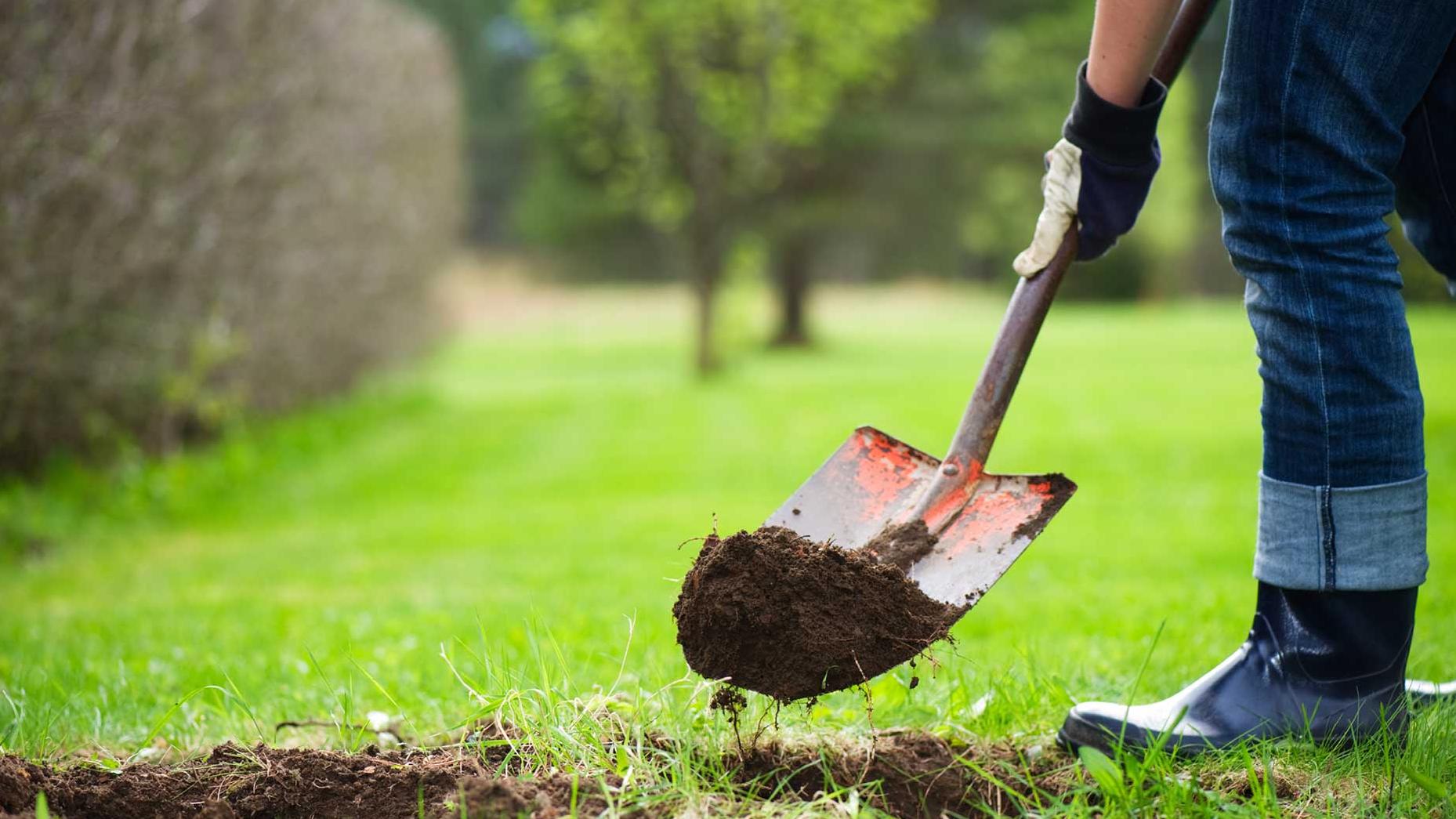 Картинка лопаты в земле